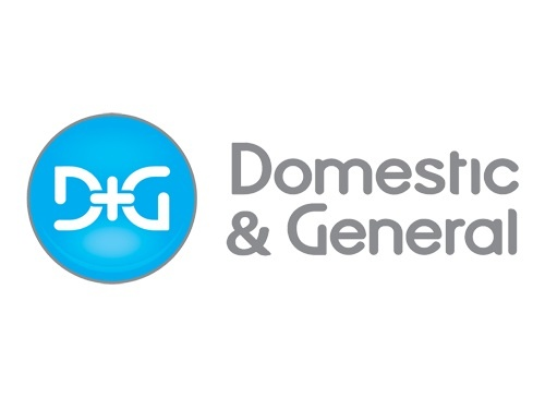 Domestic and General centred logo.jpg