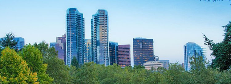 V02_bellevue_washington_750x275px